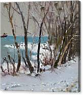 Naked Trees By The Lake Shore Canvas Print