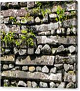 Nan Madol Wall2 Canvas Print