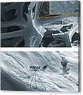 Nanotubes, Flame-resistant Coating, Sem Canvas Print