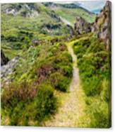 Nant Ffrancon Footpath Canvas Print