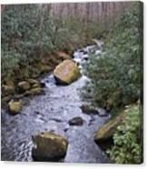 Nantahala Stream Canvas Print