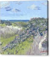 Nantucket June Dunes I Canvas Print