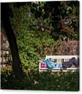 Nap On A Park Bench Canvas Print
