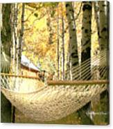 Nap Time On A Fall Day Canvas Print