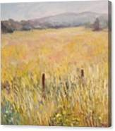 Napa Fields Canvas Print