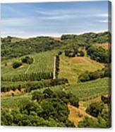Napa Valley California Panoramic Canvas Print