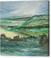 Napa Valley Vineyards Canvas Print