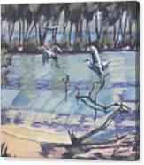 Narrabeen Lakes 2 Canvas Print