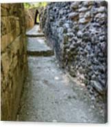Narrow Mayan Road Canvas Print