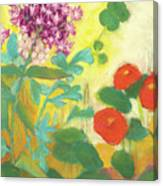 Nasturtiums, Rose Milkweed And Rue Canvas Print