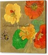 Nasturtiums With Bumble Bee Canvas Print