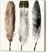 Native Feathers Canvas Print