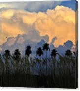 Native Florida Canvas Print