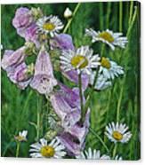 Native Flowers Canvas Print