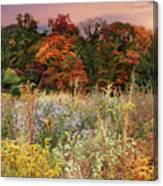 Native Garden Sunset Canvas Print