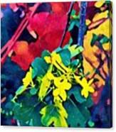 Native Plants Become Art.  Canvas Print