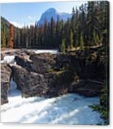 Natural Bridge On The Kicking Horse River Canvas Print