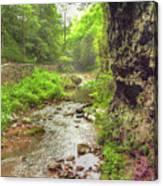 Natural Bridge Valley Canvas Print