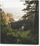 Natural Bridges Cove Canvas Print