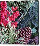 Natural Christmas 3 Canvas Print