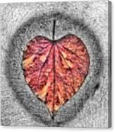 Natural Heart Canvas Print
