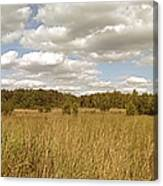 Natural Meadow Landscape Panorama. Canvas Print