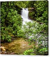 Nature At Her Most Beautiful Canvas Print
