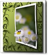 Nature Bug Canvas Print