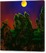 Nature In Full Moon  Canvas Print