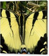 Nature In The Wild - A Natural Painting Canvas Print