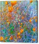 Nature Surprise  Canvas Print