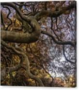 Nature Tangle Canvas Print
