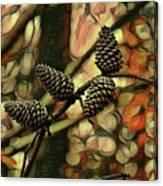 Natures Barometer Canvas Print