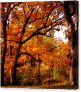 Nature's Canopy Canvas Print