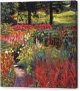 Nature's Dreamscape Canvas Print