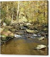 Nature's Finest 5 - Ricketts Glen Canvas Print
