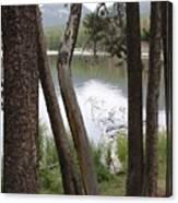 Nature's Frame Canvas Print