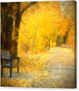 Nature's Golden Corridor Canvas Print