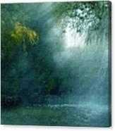 Nature's Mystique Canvas Print