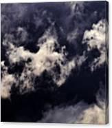 Natures Paint Daubs Canvas Print