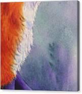 Natures Redhead Canvas Print