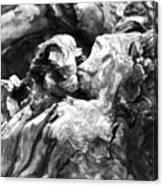 Natures Sculpture Canvas Print