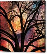 Nature's Stained Glass Canvas Print