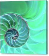 Nautilus Aqua Spiral Canvas Print