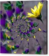 Nautilus Swirls Canvas Print
