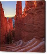 Navajo Loop Canvas Print