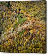 Nc Fall Foliage 0543 Canvas Print
