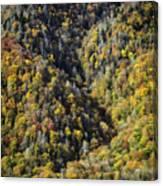 Nc Fall Foliage 0544 Canvas Print