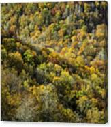 Nc Fall Foliage 0545 Canvas Print