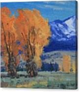 Near Kelly Canvas Print